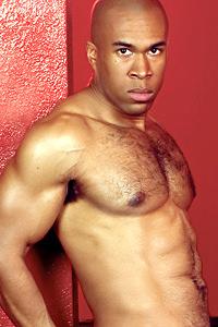 male muscle porn star: Malik Sharif, on hotmusclefucker.com