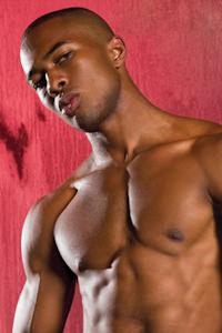Sean Lawrence - Sean Lawrence Gay Porn   Raging Stallion