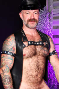 Picture of Musclebear Montreal