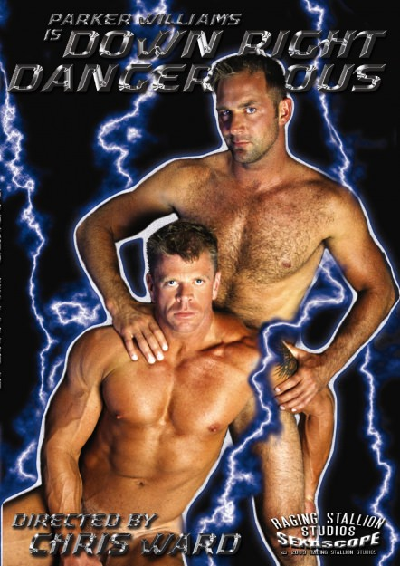 Down Right Dangerous Dvd Cover