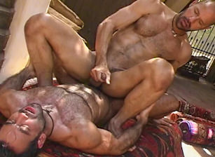 gay muscle porn clip: Arabesque - Huessein & JC, on hotmusclefucker.com