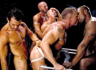 gay muscle porn video Hard Sex - (distribution scene)   hotmusclefucker.com