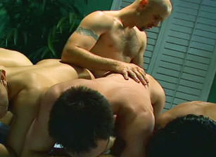 Shane Rollins In Overdrive, Scene #03