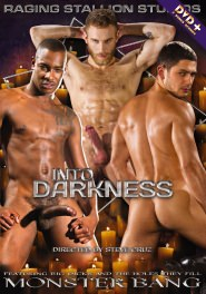 Into Darkness DVD Cover
