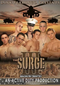 The Surge 3 DVD Cover