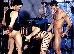 Taylor Gay Porn beste romantische Porn Movies