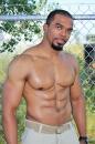 Boxer picture 3