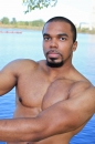 Boxer picture 20