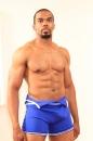 Boxer picture 4