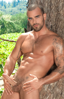 Damien Crosse Picture