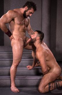 hairy gaymen